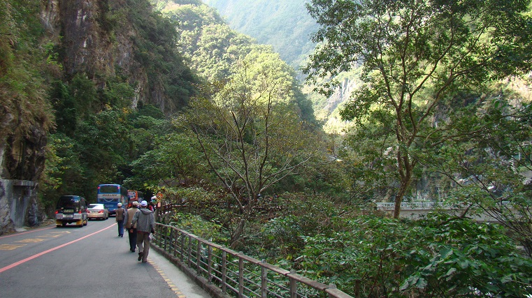 Temperate rainforest in Taiwan